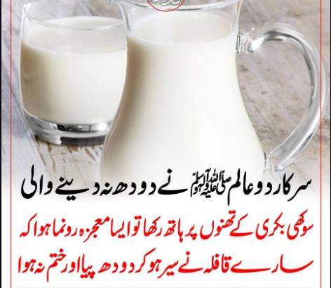 سرکار دوعالم ﷺ نے دودھ نہ دینے والی سوکھی بکری کے تھنوں پر ہاتھ رکھاتو ایسا معجزہ رونما ہوا کہ