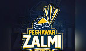 پشاور زلمی کی ٹیم مالم جبہ سوات پہنچ گئی