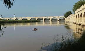 نئے ڈیم نہ بننے سے سالانہ کتنے ارب کا پانی ضائع ہورہا ہے،تشویشناک صورتحال