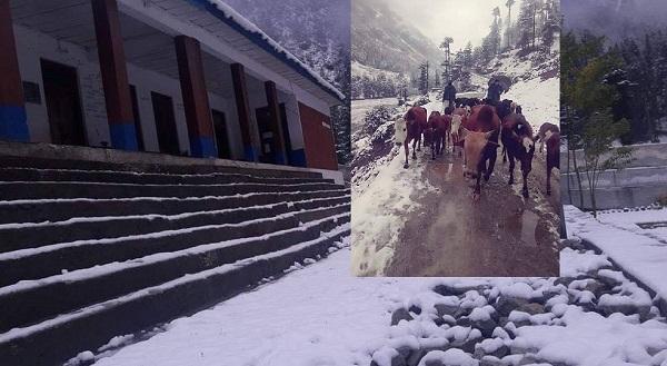 موسم سرما کی پہلی بارش ، پہاڑوں پر برفباری، موسم سرد نقل مکانی شروع