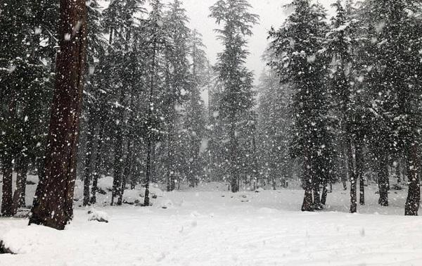 سوات میں بارش وبرفباری، سردی واپس لوٹ ائی