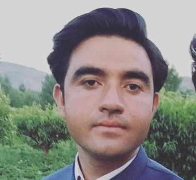 سوات کے معیشت میں حکومت کا کردار
