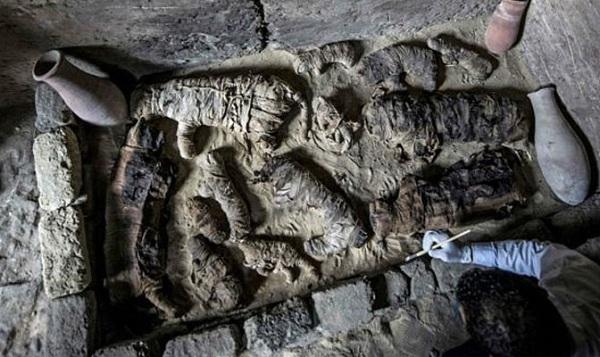 بلیوں، شیروں، مگر مچھوں اور سانپوں کی حنوط شدہ لاشیں دریافت یہ لاشیں کہاں دفن کی گئیں تھیں