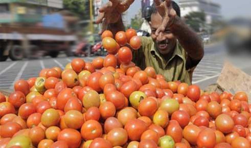 سوات،ٹماٹرکی قیمت 160روپے فی کلو تک پہنچ گئی