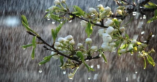 محکمہ موسمیات نے بارشوں کی خوشخبری سنادی