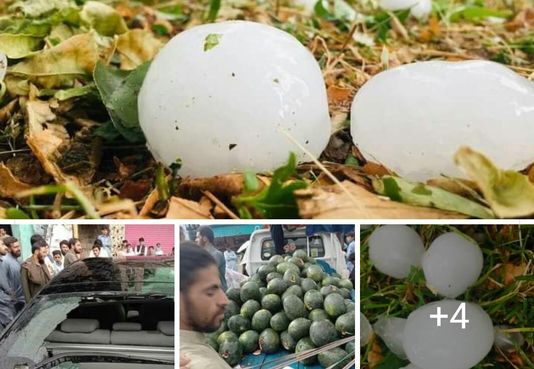 میاندم میں تیز ژالہ باری، فصلیں باغات تباہ، گاڑیوں کے شیشے ٹوٹ گئے